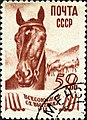 The Soviet Union 1939 CPA 682 stamp (Horse Breeding) cancelled.jpg