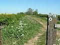 The Worlidge, Halse Road - geograph.org.uk - 420419.jpg