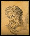 The head of Hercules. Drawing, c. 1792. Wellcome V0009200ER.jpg