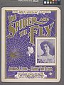 The spider and the fly (NYPL Hades-609028-1257190).jpg