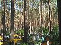 Timiryazevskoe cemetery IMG 1214.jpg