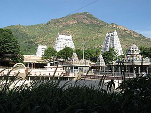 Annamalaiyar Temple - Image: Tiruvannamalai Temple 1
