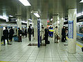 TokyoMetro-T11-Kayabacho-station-platform.jpg