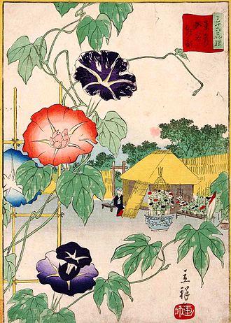 "Ipomoea nil - ""Morning Glories in Iriya, Eastern Capital"" (1866), No 28 of ""The Thirty-six Selected Flower Scenes"" by Hiroshige II"