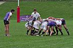Tournoi de rugby à 7 - 20141012 - Genève - 22.jpg