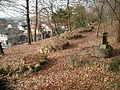 Trace of Akechi Castle-5.JPG