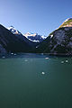 Tracy Arm Fjord (3730004415).jpg