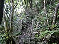 Trail of Mount Katsuu 2018 07.jpg