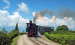Darjeeling to Ghoom Heritage Narrow Gauge Train