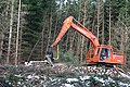 Tree Harvester - geograph.org.uk - 371849.jpg