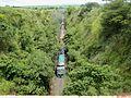 Trem da Estrada de Ferro Araraquarense passando pelo viaduto da Rodovia SP-333, perto de Taquaritinga - panoramio.jpg