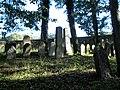 Trhový Štěpánov, židovský hřbitov - panoramio (15).jpg