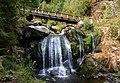 Triberger Wasserfälle 20180806 03.jpg