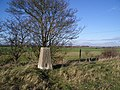 Trig Point near Harrold Park Farm - geograph.org.uk - 298007.jpg