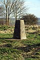 Trig Point on Beacon Hill - geograph.org.uk - 831641.jpg