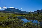 Tundra landscape with mountains and small pond, Ivvavik National Park, YT.jpg
