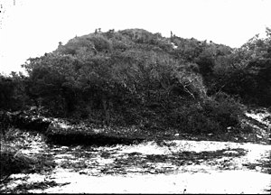 Turtle Mound - Image: Turtle Mound 1924 sm 1968