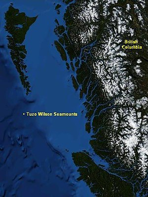 Tuzo Wilson Seamounts - Image: Tuzo Wilson Seamounts