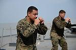 USS Mesa Verde (LPD 19) 140426-N-BD629-245 (14057900026).jpg
