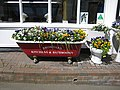 Unusual plant containers, Bromyard - geograph.org.uk - 807127.jpg