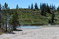 Upper Geyser Basin Yellowstone 19.JPG