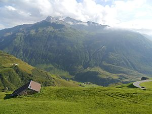 Gemsstock seen from the Nätschen (northeast)