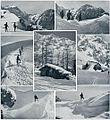 V Kamniških planinah 1910.jpg