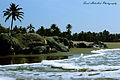 Vagator Beach, Goa.jpg