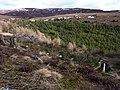 Valley of Afon-Yn-y-groes - geograph.org.uk - 1754232.jpg