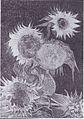 Van Gogh - Fünf Sonnenblumen in einer Vase.jpeg