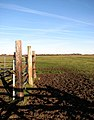View across a marsh pasture - geograph.org.uk - 1110683.jpg