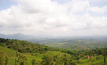 View atop chembra peak.jpg