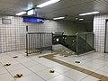 View in Kitashinchi Station.jpg