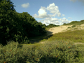 Vlakte van Waalsdorp (Waalsdorpervlakte) 2016-08-10 img. 441.png