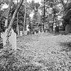 voormalige joodse begraafplaats met grafstenen te terborg - terborg - 20345249 - rce