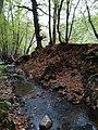 Vue du ruisseau sur la commune d'Ivoz-ramet.jpg