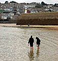 Wading at low water near Smeatons Pier, St Ives - geograph.org.uk - 1549464.jpg