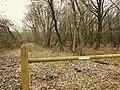 Waldweg im Dosenmoor.jpg