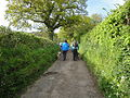 Walk the Wight 2010 at Bembridge Peacock Hill.jpg