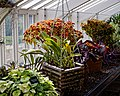 Walled garden greenhouse at Myddelton House, Enfield, London, England 05.jpg