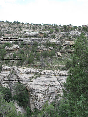 Walnut Canyon National Monument - Geological strata: Kaibab Limestone, Toroweap Formation, and Coconino Sandstone