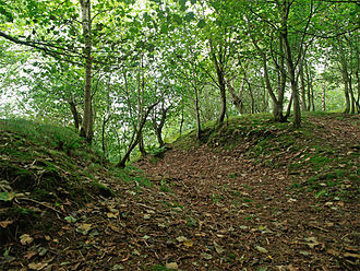 Gillies Hill - Defensive ditch of Iron Age Wallstale Dun on the south end of Gillies Hill