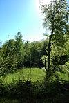 Warstein-Wildpark 2007-04-30 16-37-48 (1174748193).jpg