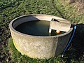 Water Trough for Animals - geograph.org.uk - 334930.jpg