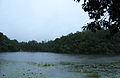 Wayanad Pookkode Lake1.jpg