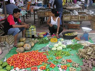 Javier, Leyte - Local high value commercial crops