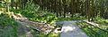 Weilquelle-Taunus-2013-936-939.jpg