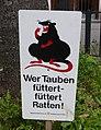 Wer Tauben füttert - füttert Ratten! (2).jpg