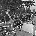 Wereld Dierendag 1964 , het voeren der dieren (buitenland), Bestanddeelnr 916-9719.jpg