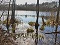 Wernsdorf - Seechen (Little Lake) - geo.hlipp.de - 34913.jpg